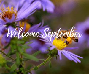 September Fun Days