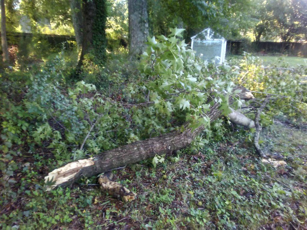 Hurricane Dorian debris