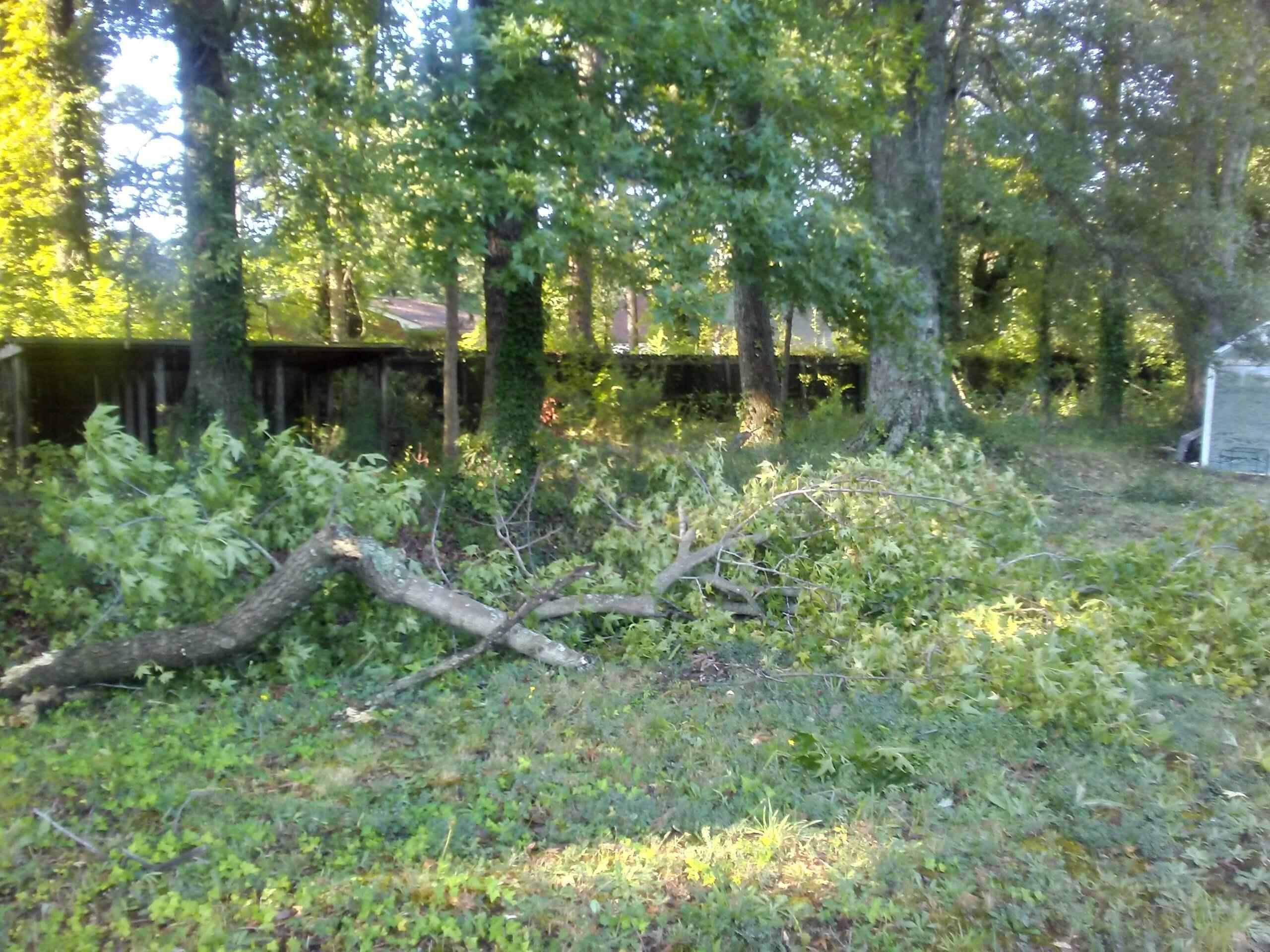 Hurricane Dorian debris2